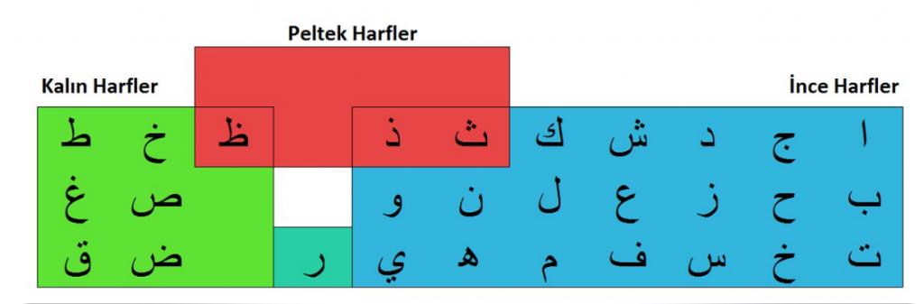 Arap Alfabesindeki Kalın,ince ve peltek harfler nelerdir